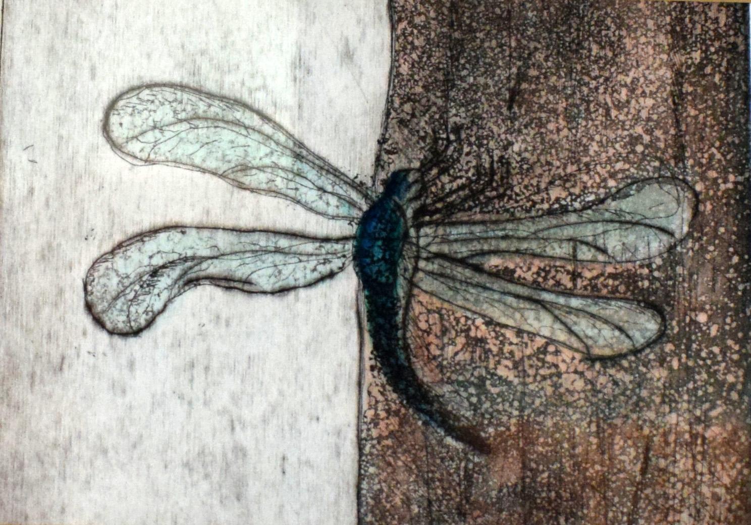 Dragonfly 13 x 13 cm