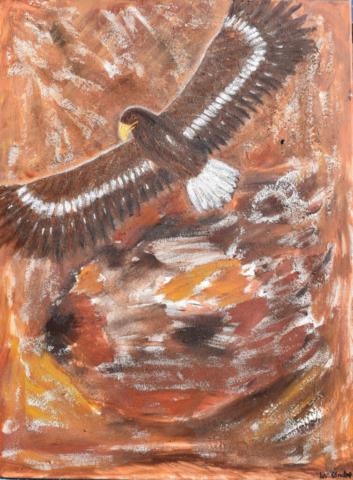 Eagle 60 x 80 cm